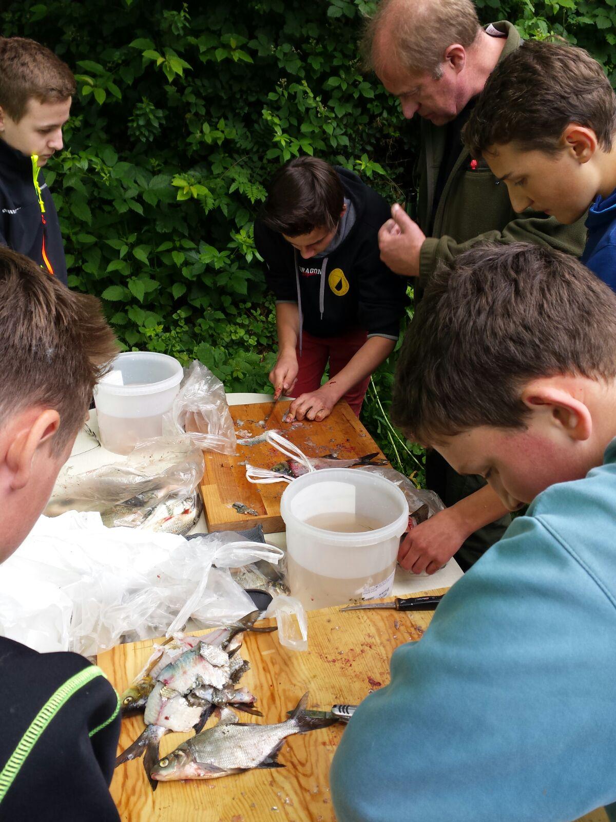 Die Jugendliche am filetieren nach der erster Hegefischen 2016